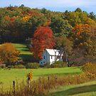 Farmstead by Jane Best