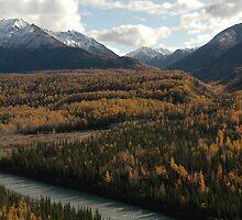 Matanuska River II by Francine Dufour Jones
