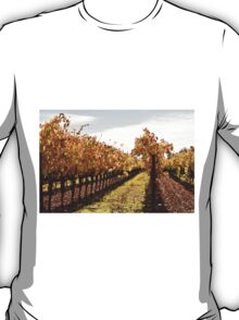 Fall in Sonoma Valley T-Shirt