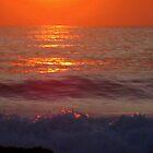 Silver Sea~Golden Sun/Sky Reflections by Honor Kyne