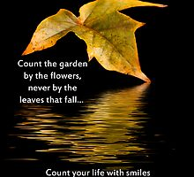 Count Your Life With Smiles by Sheryl Kasper