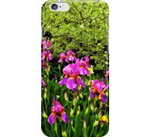 Border of Beauty iPhone Case/Skin