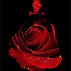 Red Rose Cinderella  by Serdd