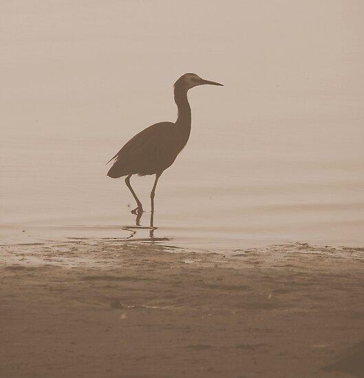Sepia-Lone Crane by Martice