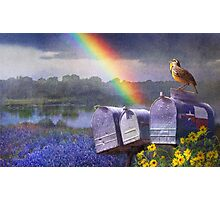 mailboxes bluebonnets and meadowlark in rainbow Photographic Print