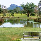 Grampians View by TracyD