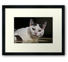Lindy Sunbath Framed Print