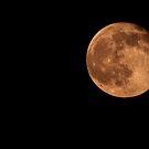 Last Nights Moon by Virginia N. Fred
