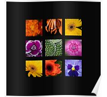 The Colors of Autumn Poster