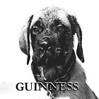 GUINNESS  by jalcruz