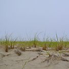 Sand Dunes by Sunshinesmile83