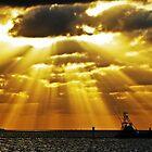 Heavenly Passage by SandyJohnson