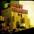 The New Yorker by RebeccaT