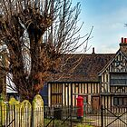 Half timbered house by jasminewang