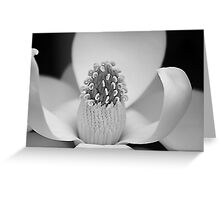 *Inner Beauty* Greeting Card
