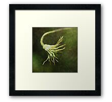 """Every artist dips his brush in his own soul, and paints his own nature into his pictures."" Framed Print"