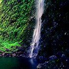 Hanakoa Falls by kevin smith  skystudiohawaii
