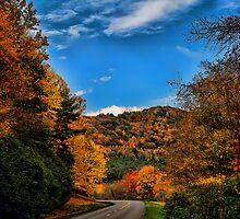 Parkway by Jason  Burris