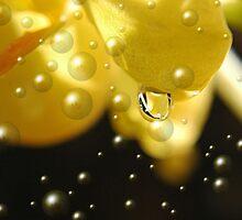 Yellow Bubbles by Donna Adamski