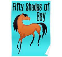 Fifty Shades of Bay - Tshirts & Hoodies Poster