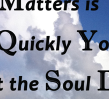 What matters is how quickly you do what the soul directs. Sticker