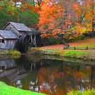 Mabry Mill in the Fall by Robert Woods