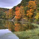 Kickapoo State Park - Number Six Lake by Jeff VanDyke