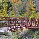 Kickapoo State Park - Number Six Lake Bridge #2 by Jeff VanDyke