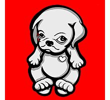 Love Pug Puppy Dog Photographic Print