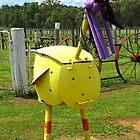Emu or Big Bird?? by Marilyn Harris