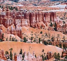The Beauty of Bryce Canyon National Park by Laurie Puglia