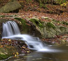 Fall Creek Gorge - Waterfall #9 by Jeff VanDyke