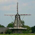 WIND MILL by Johan  Nijenhuis