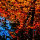 Mountain Stream, Autumn Reflections, Nana's Window by Richard VanWart