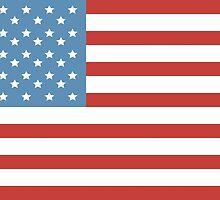 Flag Of America by Olga Altunina