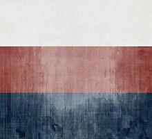 Grunge Flag Of Russia by Olga Altunina