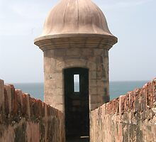 San Juan Fort by Edson