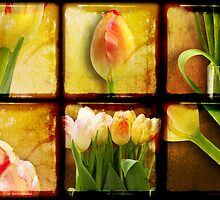 In Praise of Tulips by Heather Prince ( Hartkamp )