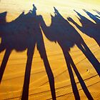 Broome Camels by Blake Johnson