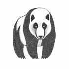 Panda by John Grundeken