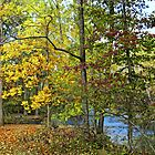 Autumn along the Connecticut River by LjMaxx