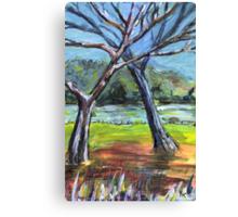 Sketching Trees Canvas Print
