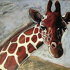 Giraffe by Neil Elliott
