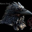&quot;The Raven Lord&quot; by Val  Brackenridge