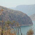 Lake Argyle in smoke by BonnieH