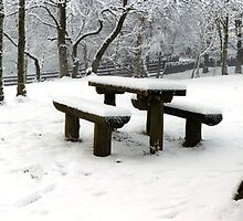 Seats in Snow by Brian Reynolds