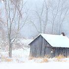 Winter by Jim Cumming