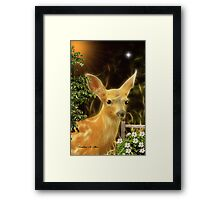 ~ Dawnie Doe ~ Framed Print