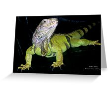 """Mikie Girl: """"I'm NOT moving"""" Greeting Card"""