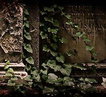 My sacred garden IV. by Csaba Jekkel